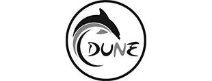 dune-gris